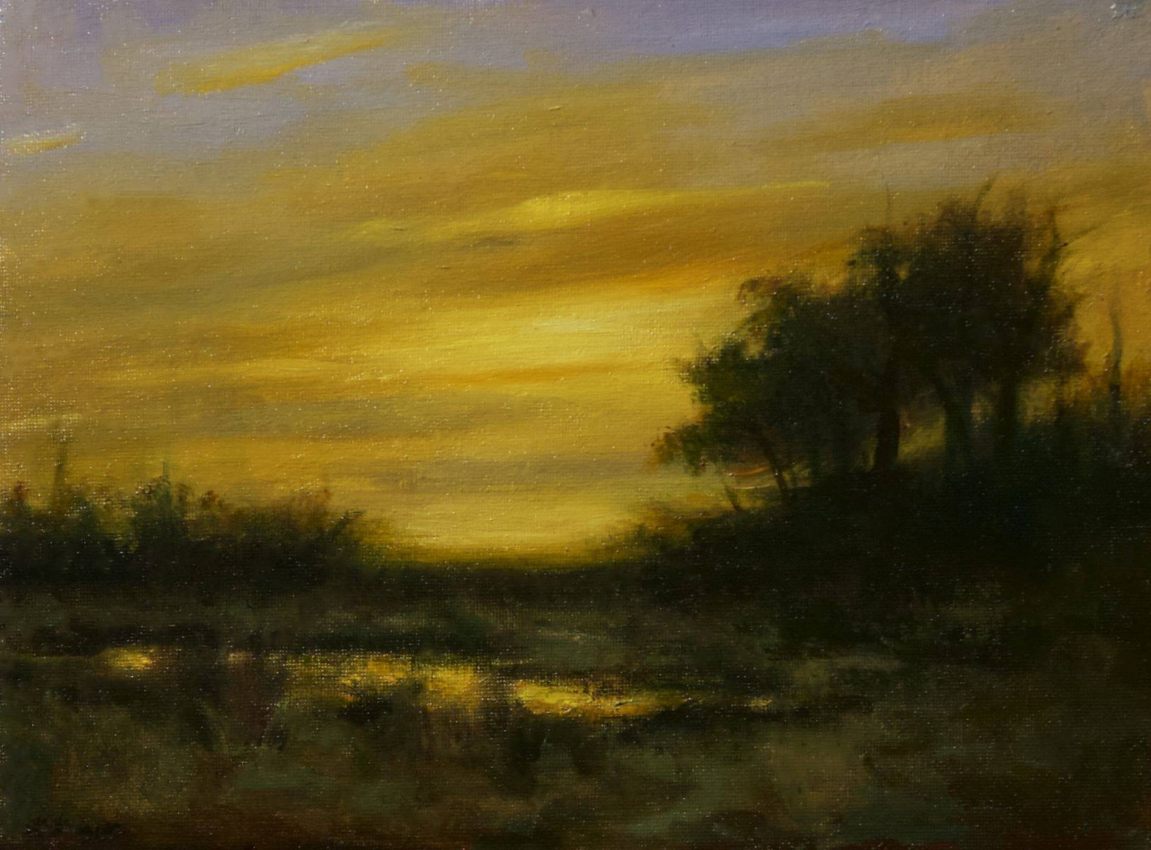 Golden Evening - Rose Freymuth-Frazier