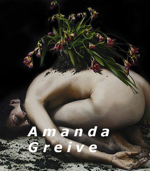 Exhibition of Amanda Greive