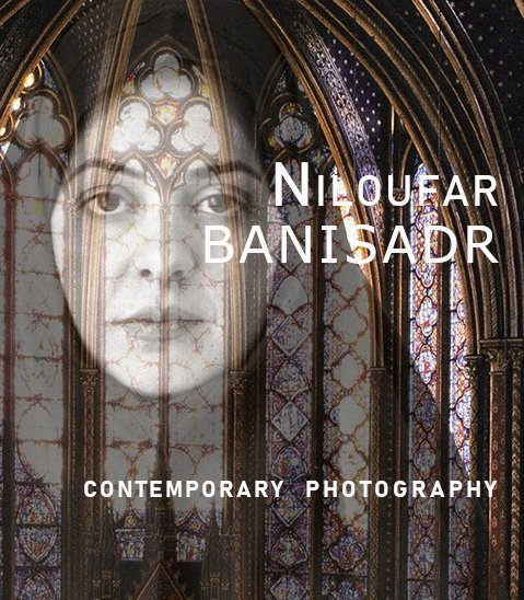 Mes Voyages by Niloufar Banisadr - Artist Biography